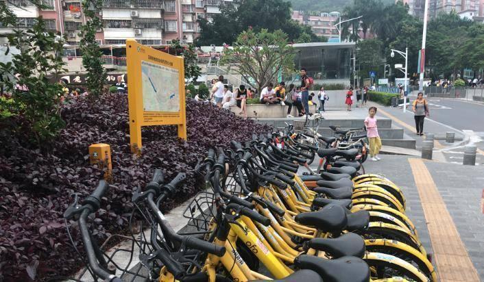 """一线城市共享单车频涨价:月卡、公交和""""11路""""你选哪个?"""